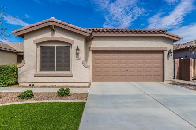 1424 W Popcorn Tree Avenue, Queen Creek, AZ 85140 (MLS #5834314) :: Yost Realty Group at RE/MAX Casa Grande