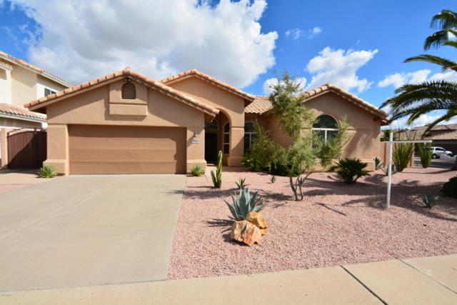 13253 S 35th Street, Phoenix, AZ 85044 (MLS #5834315) :: Kepple Real Estate Group