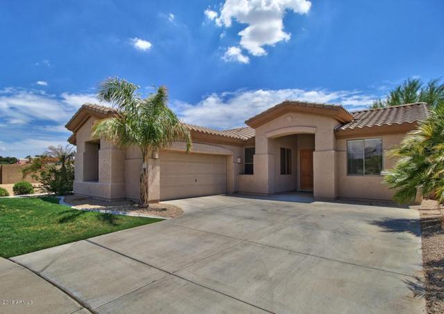 14601 W Amelia Avenue, Goodyear, AZ 85395 (MLS #5834332) :: Devor Real Estate Associates