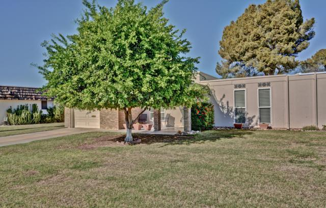 9622 W Oak Ridge Drive, Sun City, AZ 85351 (MLS #5834344) :: Riddle Realty