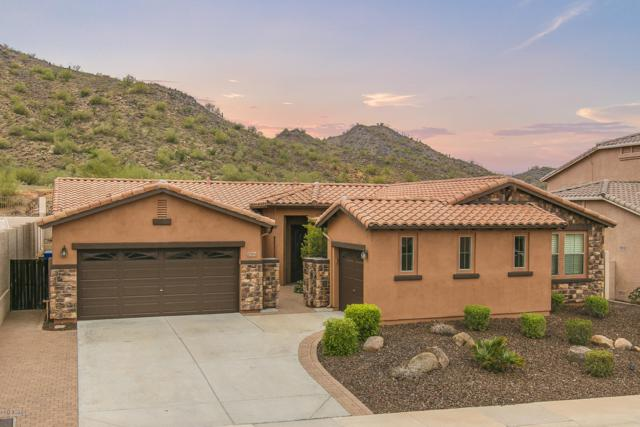 27914 N 66TH Lane, Phoenix, AZ 85083 (MLS #5834397) :: Santizo Realty Group