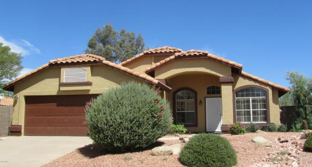 1308 E Grandview Road, Phoenix, AZ 85022 (MLS #5834408) :: Kortright Group - West USA Realty