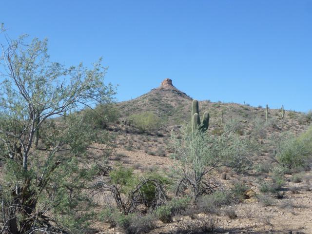 0 N Avram Place, Queen Creek, AZ 85142 (MLS #5834438) :: Realty Executives