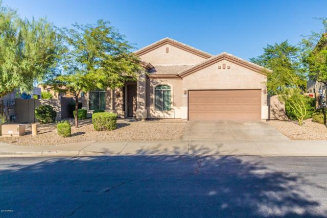 18572 W San Carlos Drive, Goodyear, AZ 85338 (MLS #5834476) :: Kortright Group - West USA Realty