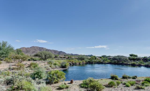41723 N Moss Springs Court, Anthem, AZ 85086 (MLS #5834491) :: Revelation Real Estate
