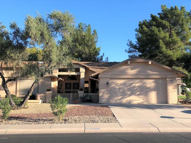 14122 W Cavalcade Drive, Sun City West, AZ 85375 (MLS #5834503) :: Revelation Real Estate