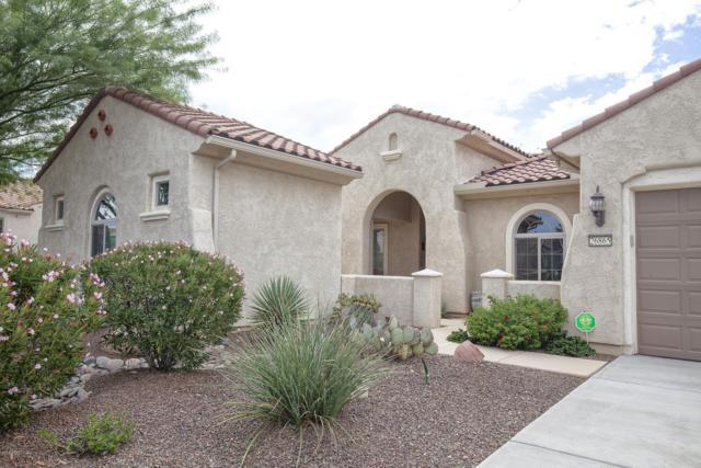 26865 W Potter Drive, Buckeye, AZ 85396 (MLS #5834525) :: Desert Home Premier