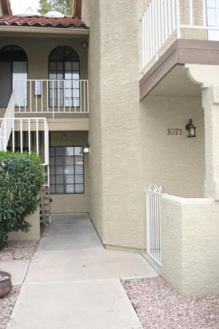 11011 N 92nd Street #1071, Scottsdale, AZ 85260 (MLS #5834532) :: The Daniel Montez Real Estate Group