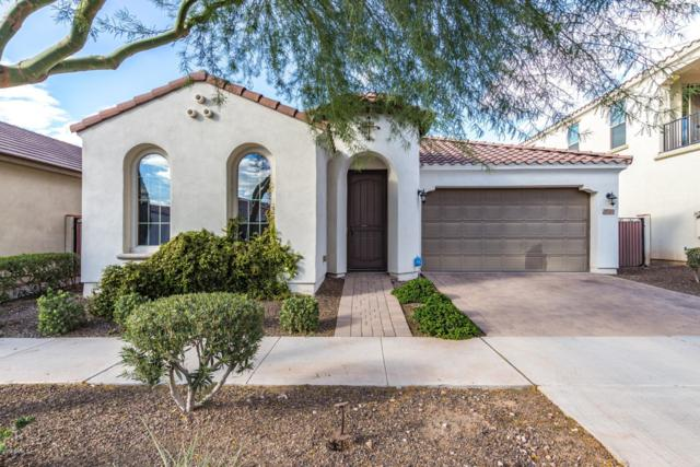 10704 E Pivitol Avenue, Mesa, AZ 85212 (MLS #5834550) :: Realty Executives