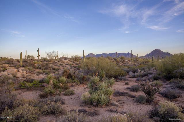 28787 N 114TH Street, Scottsdale, AZ 85262 (MLS #5834561) :: Phoenix Property Group