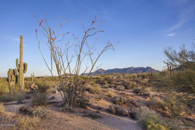 28787 N 114TH Street, Scottsdale, AZ 85262 (MLS #5834562) :: Phoenix Property Group