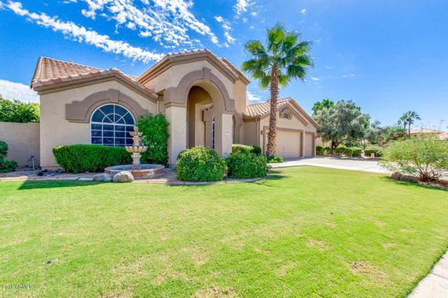 117 N Ocean Drive, Gilbert, AZ 85233 (MLS #5834584) :: Realty Executives