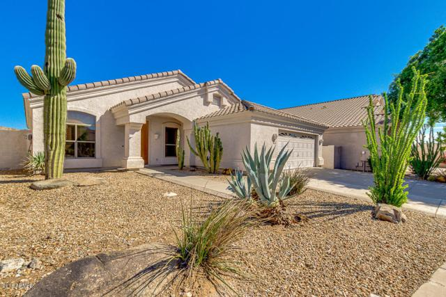 1210 E Cottonwood Lane, Phoenix, AZ 85048 (MLS #5834587) :: Realty Executives