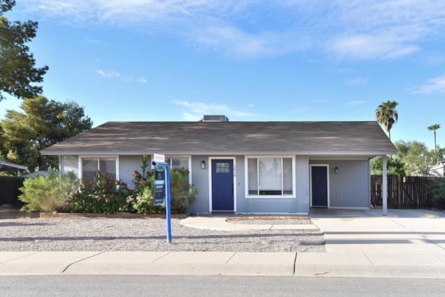 1616 W Stottler Drive, Chandler, AZ 85224 (MLS #5834620) :: The Jesse Herfel Real Estate Group