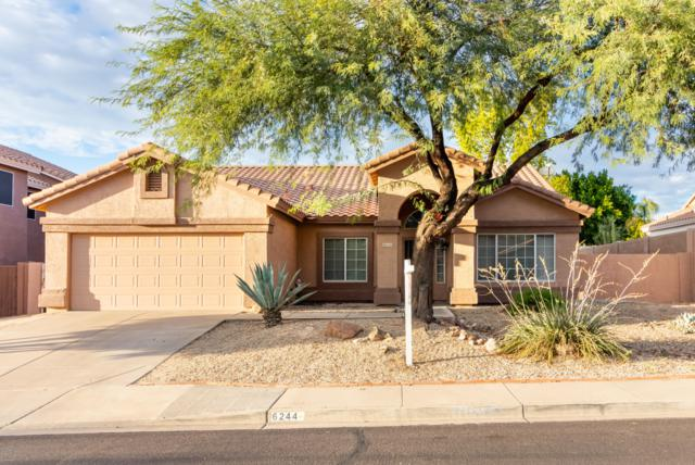 6244 E Riverdale Street, Mesa, AZ 85215 (MLS #5834625) :: Realty Executives