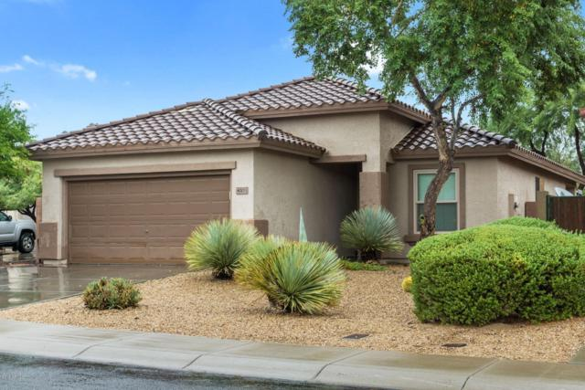40011 N Panther Creek Court, Anthem, AZ 85086 (MLS #5834636) :: Desert Home Premier