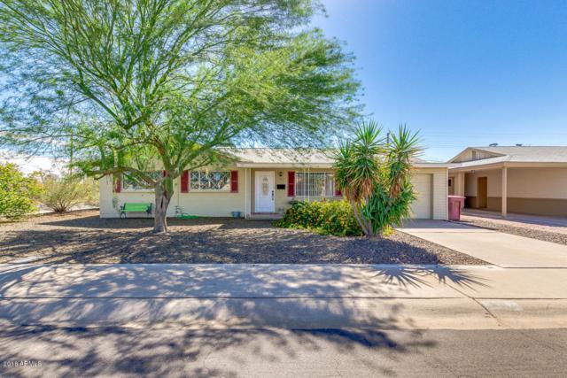 7917 E Belleview Street, Scottsdale, AZ 85257 (MLS #5834649) :: Yost Realty Group at RE/MAX Casa Grande