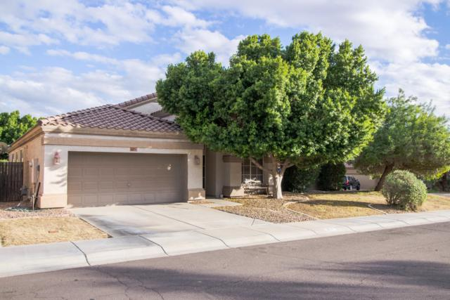 3571 S Barberry Place, Chandler, AZ 85248 (MLS #5834655) :: Realty Executives