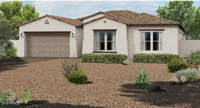 10440 E Tiger Lily Avenue, Mesa, AZ 85212 (MLS #5834661) :: Realty Executives