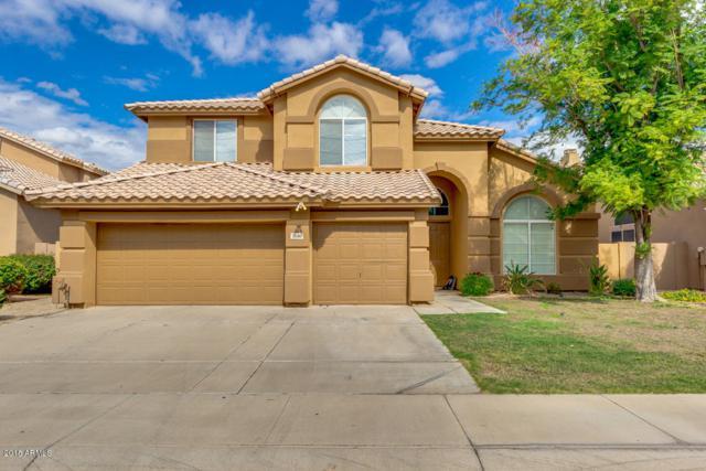 5040 W Laredo Street, Chandler, AZ 85226 (MLS #5834674) :: Realty Executives