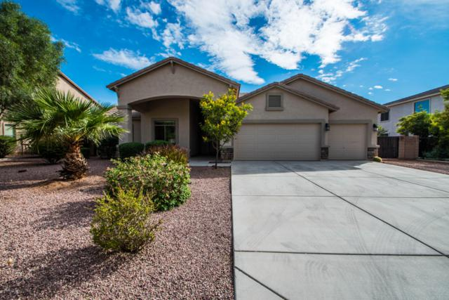 14761 W Cameron Drive, Surprise, AZ 85379 (MLS #5834675) :: Lux Home Group at  Keller Williams Realty Phoenix