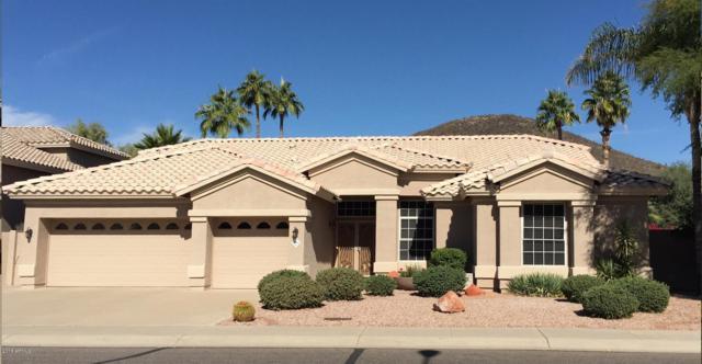 6284 W Donald Drive, Glendale, AZ 85310 (MLS #5834691) :: Occasio Realty