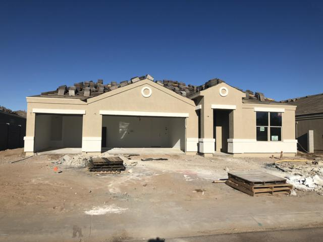 598 W Belmont Red Trail, San Tan Valley, AZ 85143 (MLS #5834694) :: Realty Executives