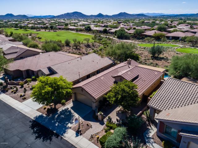41006 N Noble Hawk Way, Anthem, AZ 85086 (MLS #5834715) :: Desert Home Premier