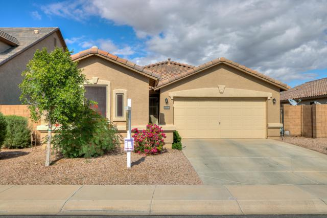 41648 W Corvalis Lane, Maricopa, AZ 85138 (MLS #5834743) :: Yost Realty Group at RE/MAX Casa Grande