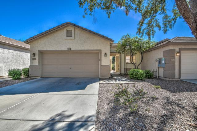 3813 W Commonwealth Avenue, Chandler, AZ 85226 (MLS #5834746) :: Yost Realty Group at RE/MAX Casa Grande