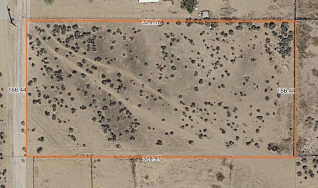 7801 S 350th Avenue, Tonopah, AZ 85354 (MLS #5834751) :: Brett Tanner Home Selling Team