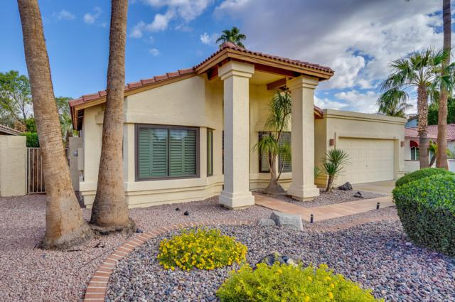 7228 W Morrow Drive, Glendale, AZ 85308 (MLS #5834754) :: RE/MAX Excalibur