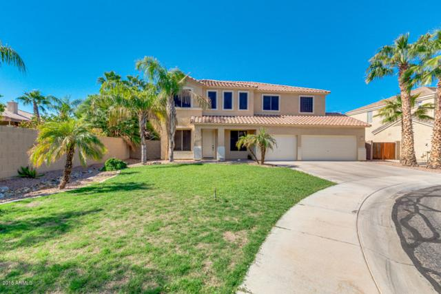 4428 N Joey Court N, Litchfield Park, AZ 85340 (MLS #5834765) :: Lux Home Group at  Keller Williams Realty Phoenix