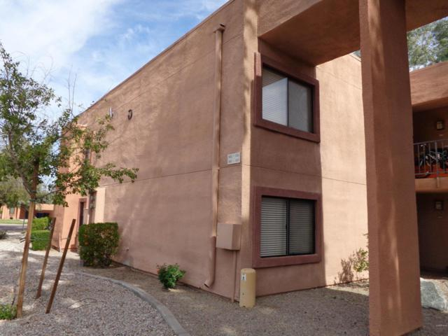 330 S Beck Avenue #224, Tempe, AZ 85281 (MLS #5834767) :: Occasio Realty
