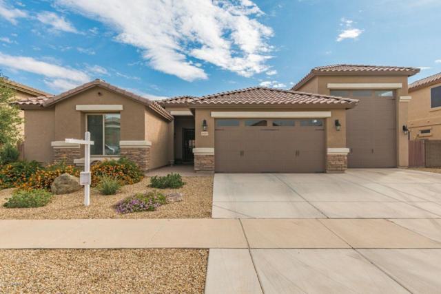 16063 W Jenan Drive, Surprise, AZ 85379 (MLS #5834769) :: The Garcia Group