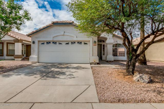 5850 S Brittany Lane, Tempe, AZ 85283 (MLS #5834787) :: Occasio Realty