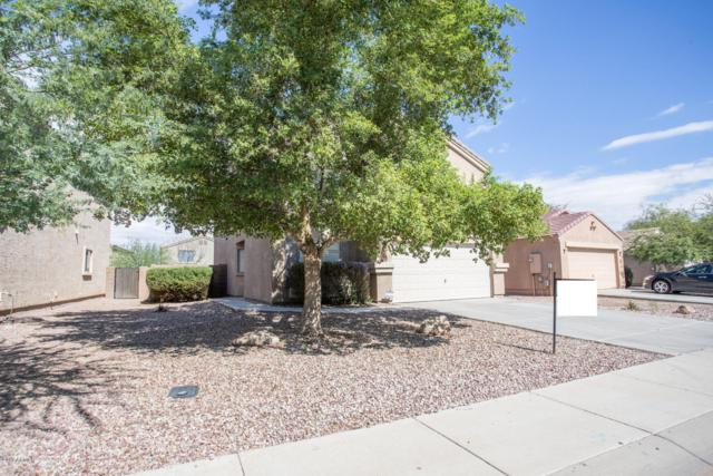 43710 W Magnolia Road, Maricopa, AZ 85138 (MLS #5834797) :: The Garcia Group
