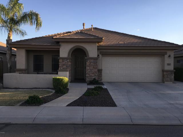 11543 E Starkey Avenue, Mesa, AZ 85212 (MLS #5834829) :: The Wehner Group