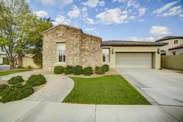 3055 S Ashley Drive, Chandler, AZ 85286 (MLS #5834838) :: Occasio Realty