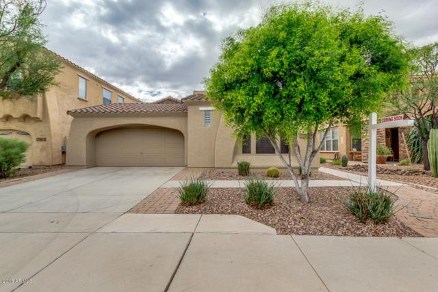 29840 N 121ST Lane, Peoria, AZ 85383 (MLS #5834849) :: Occasio Realty