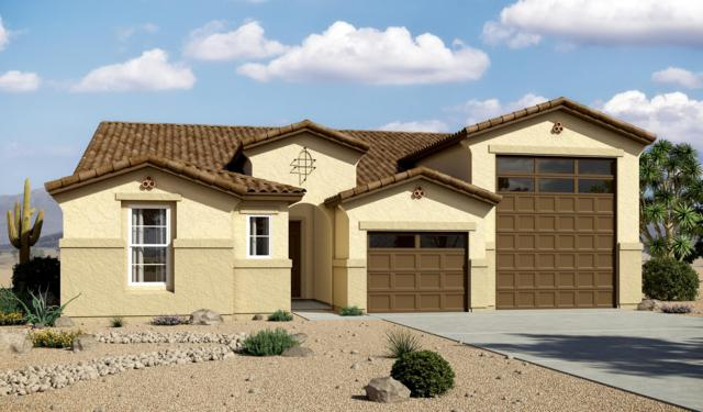 7925 W Encinas Lane, Phoenix, AZ 85043 (MLS #5834850) :: Team Wilson Real Estate
