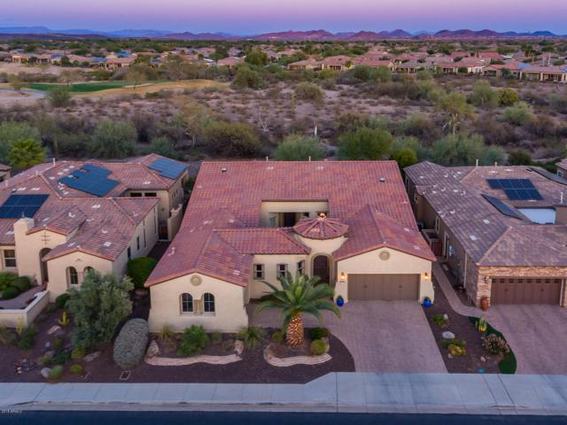 27781 N 130TH Drive, Peoria, AZ 85383 (MLS #5834856) :: Occasio Realty