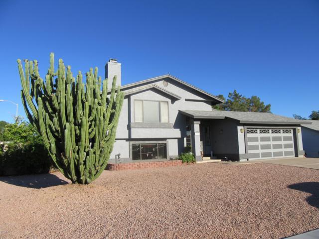 1317 N Raven Street, Mesa, AZ 85207 (MLS #5834865) :: Occasio Realty