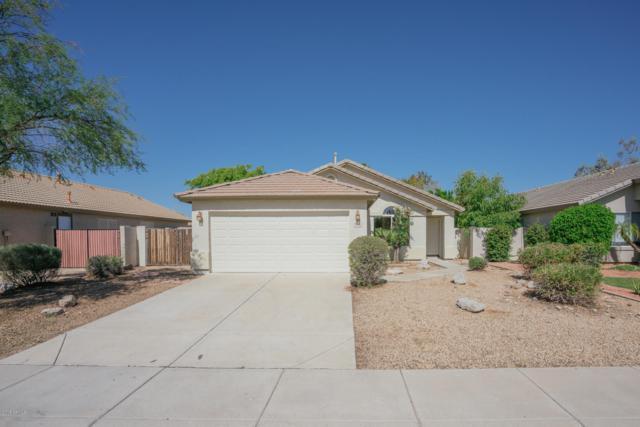 8186 W Tonopah Drive, Peoria, AZ 85382 (MLS #5834899) :: Occasio Realty