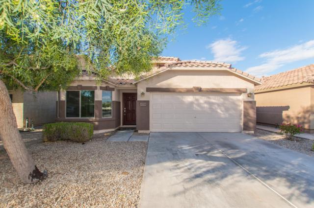 45518 W Tulip Lane, Maricopa, AZ 85139 (MLS #5834917) :: CANAM Realty Group
