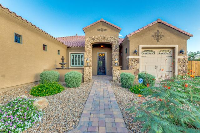 22401 S 215TH Street, Queen Creek, AZ 85142 (MLS #5834922) :: The Pete Dijkstra Team