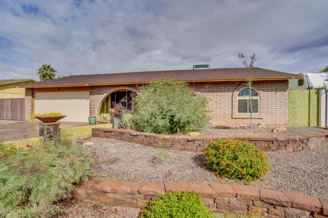 2204 W Colt Road, Chandler, AZ 85224 (MLS #5834964) :: Occasio Realty