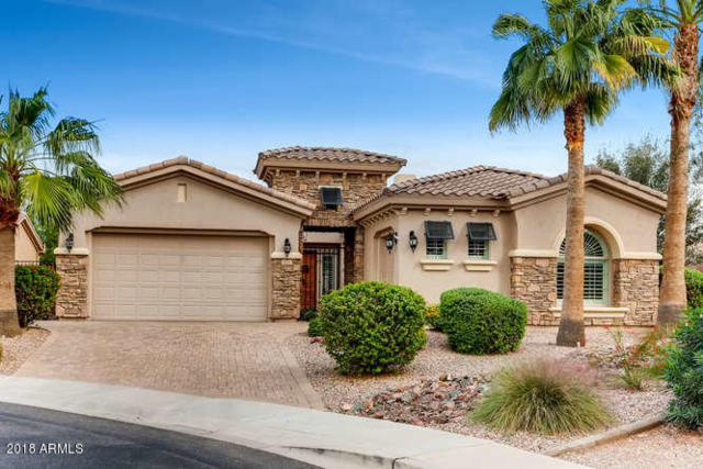 5125 S Mingus Place, Chandler, AZ 85249 (MLS #5834982) :: Occasio Realty