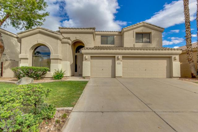 3291 S Vine Street, Chandler, AZ 85248 (MLS #5834983) :: Occasio Realty