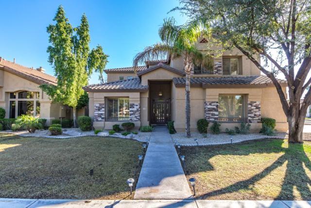 1603 S Tamarisk Drive, Chandler, AZ 85286 (MLS #5834993) :: Occasio Realty